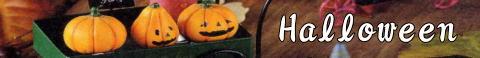 """秋の収穫を祝う""""ハロウィン""""  子供達が思い思いの仮装をして歩き、町の人達からお菓子をもらえる。  そんな特別な日だからこそ、貴方だけの素敵な演出してみませんか。    いろいろな形をしたパンプキンやモンスターたちのオーナメントやポット、ジャック・ランタン  オレンジや黒のハロウィンカラーで、お部屋やグリーンの周りに秋の彩りをプラス"""